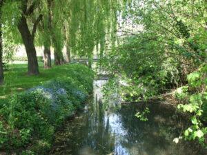 Plan d'eau Ecueillé